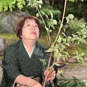 Japanese Flower Arrangement 3