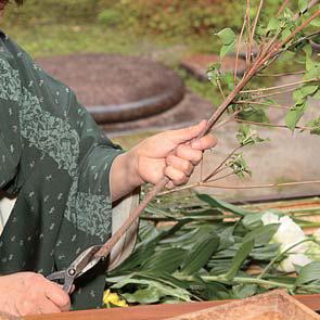 Japanese Flower Arrangement 4