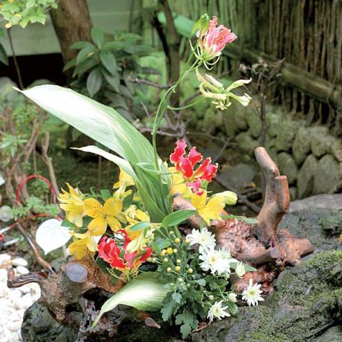 Japanese Flower Arrangement 5